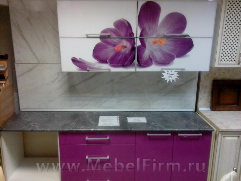 Кухни с цветами на фасаде фото пластик